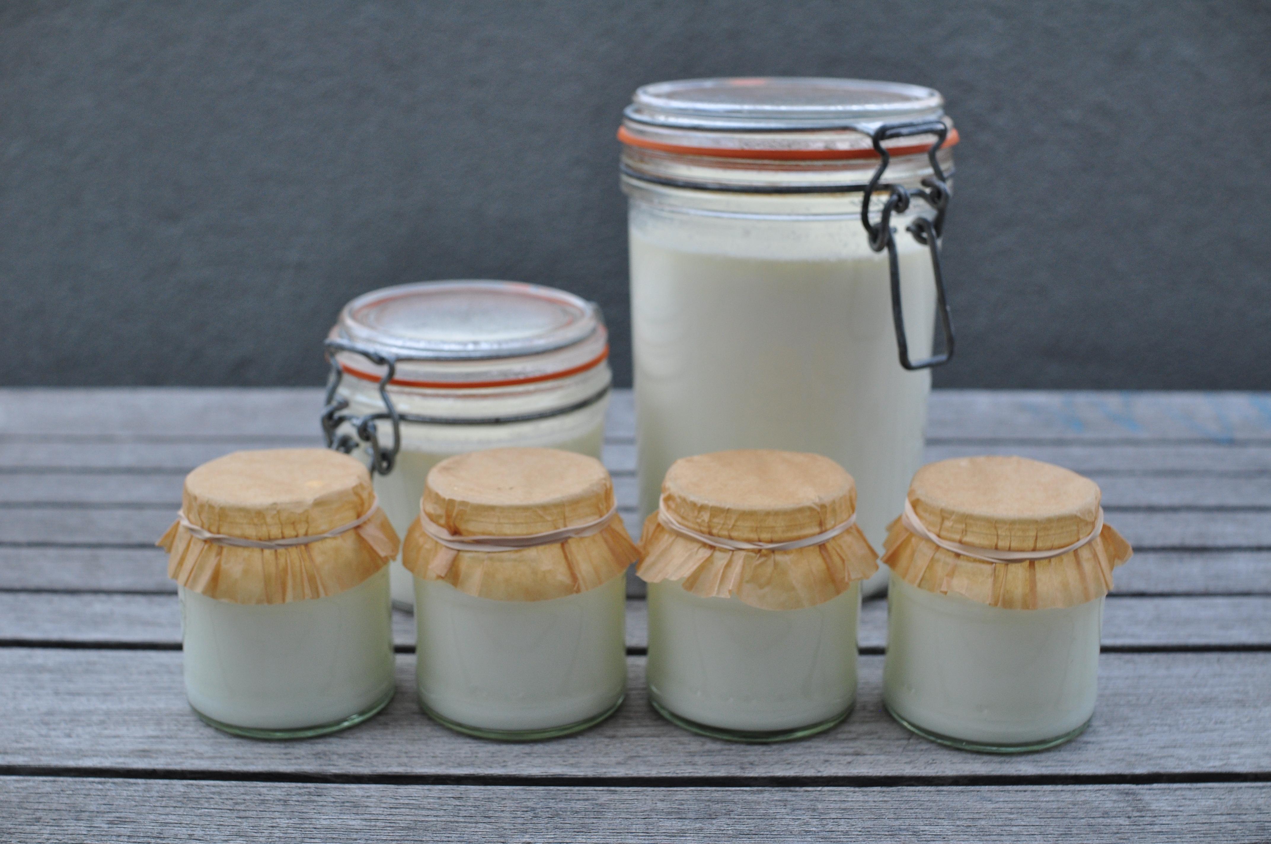 Yogurt | Nettle and Quince