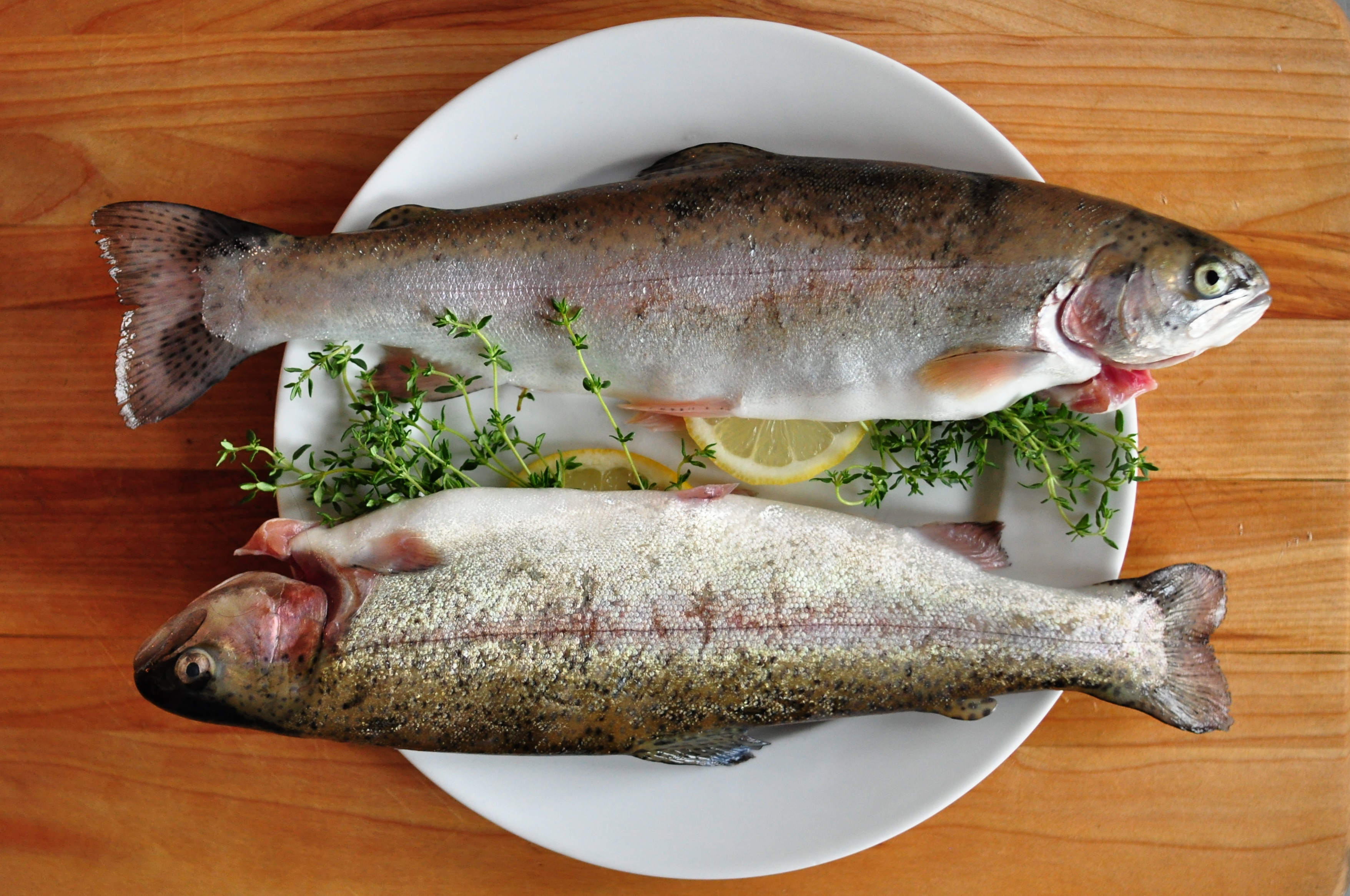 Top 6 Fish For Weight Loss (With Diet Chart)